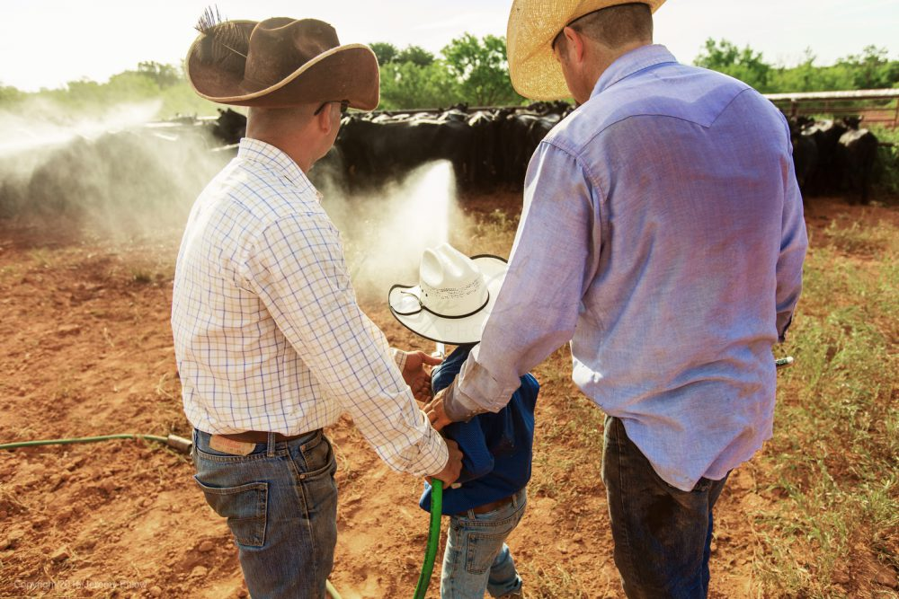Waggoner Ranch cowboy Josh Stacey's son helps out on the ranch