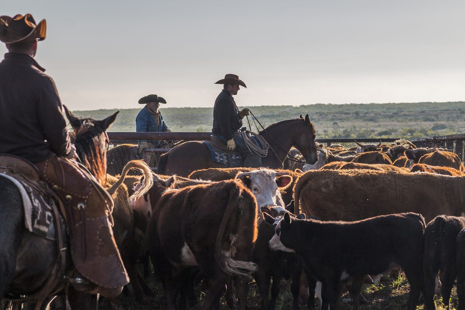 New photographs of Waggoner Ranch by Jeremy Enlow