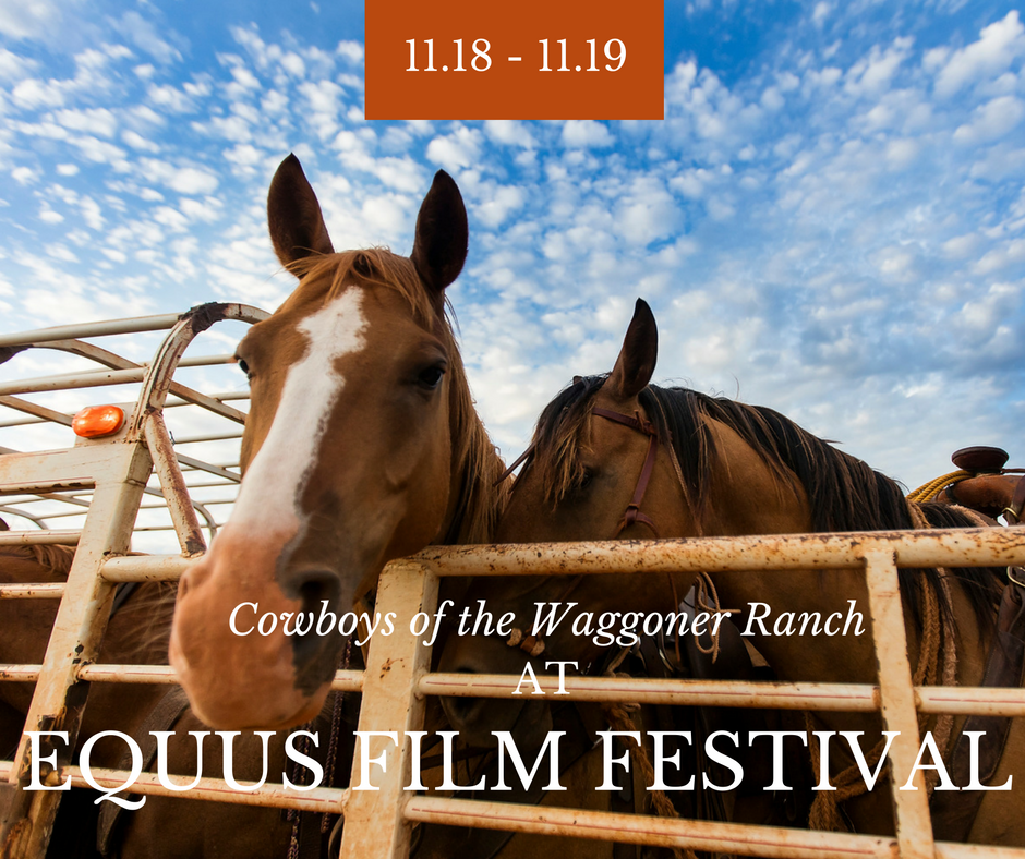 Join Jeremy Enlow November 18-19 at Equus Film Festival in NYC