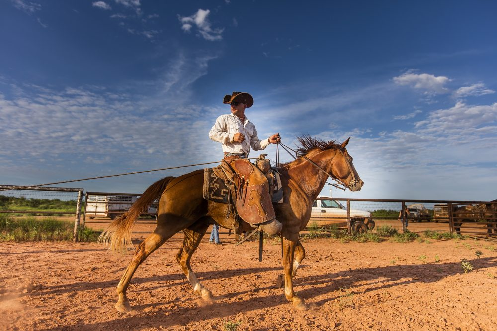 the waggoner ranch sold recently after 165+ years of family ownership